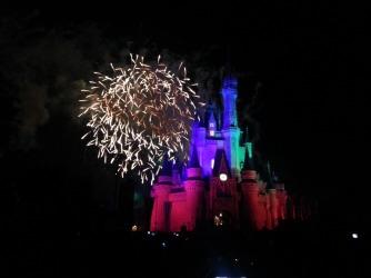 Cities - FL - Disney Night Fireworks