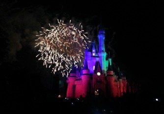 Cities - FL - Disney Night Fireworks